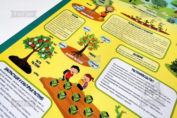 Плакат «Делай уроки сам». Окружающий мир